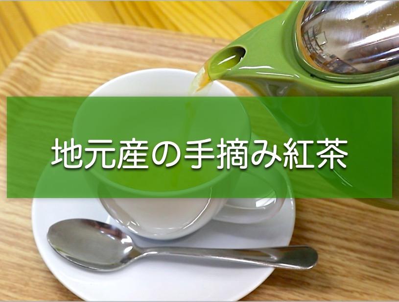 地元産の紅茶でまったりティータイム!大川村にある「村の駅」へ行ってきたよ。